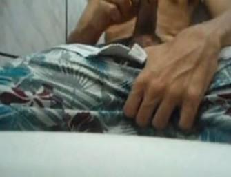 Gatinho faz vídeo no WhatsApp e cai na net