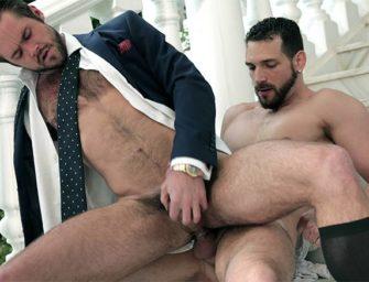 Ensinando boas maneiras para o macho arrogante