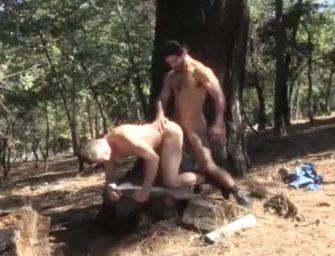 Não há nada melhor do que uma trepada na floresta