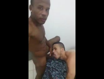Branquelo gay se acaba na pica rosada e cabeçuda do negão