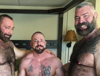 Três ursos estão cheios de tesão para uma trepada espetacular