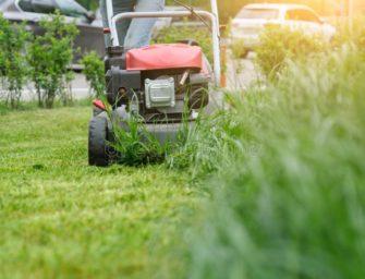 Fui cortar a grama no vizinho novo na cidade, e acabei cedendo